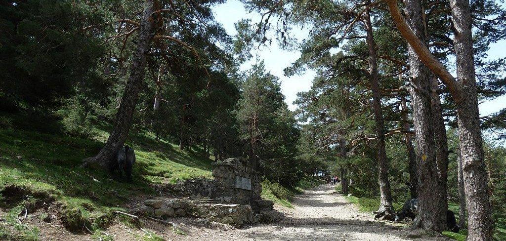 Ya puedes apuntarte a nuestra Ruta por el Agua en la Sierra de Madrid